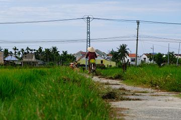 Vélo à travers le riz sur Mirko Meijer
