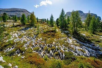paradiesische Aussichten in den Dolomiten von Leo Schindzielorz