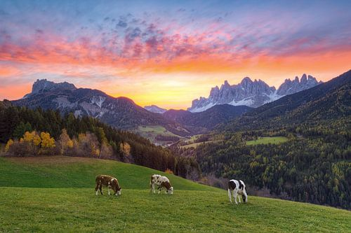 Sonnenaufgang im Villnösstal von Michael Valjak