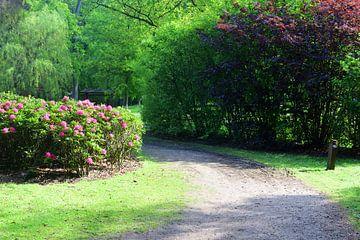 Im Garten von Staverden von Gerard de Zwaan