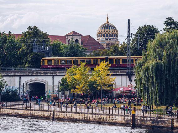 Berlin – James-Simon-Park