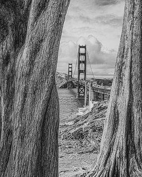 Golden Gate Bridge in Schwarz-Weiß von Bert Nijholt