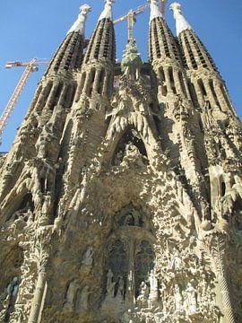 Sagrada Familia van Iris Blonk