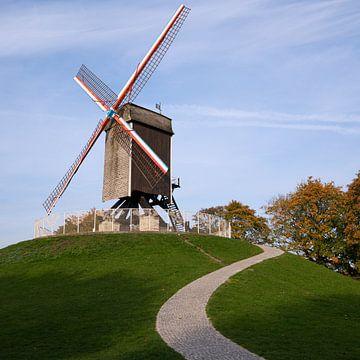 Windmühle, Brügge, Belgium von Alexander Ludwig
