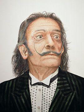 Dalí, Trevor Neal von Bridgeman Images