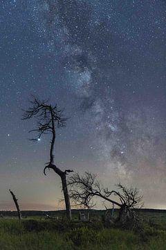 Die Milchstraße von Jim De Sitter