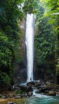 Wasserfall auf den Philippinen (vertikal) von Jessica Lokker