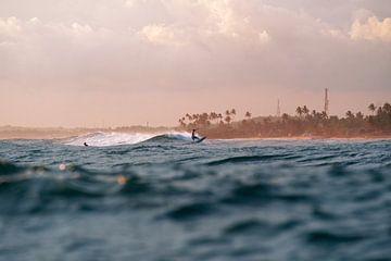 La légende du surf sur Ward Jonkman