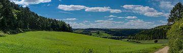 Bossen in de Haute Marne van Peter Hermus