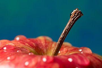 Frisse rode appel van Josephine Huibregtse
