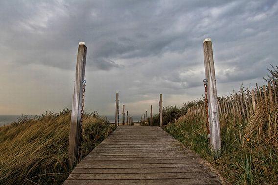 Les Dunes van Yvonne Blokland