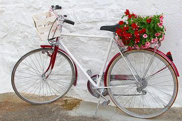 Italiaanse fiets bloemen van Inge Hogenbijl