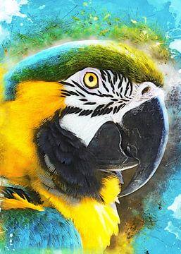 Papagei Ara Vogel Aquarell Kunst #Papagei von JBJart Justyna Jaszke