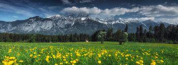 Panorama des montagnes autrichiennes sur Marcel van Balkom