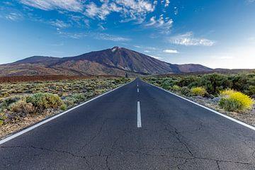 Zonsopkomst aan de voet van El Teide op Tenerife van Koen Henderickx