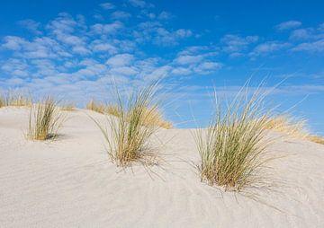 Drie op een rij, helmen in het zand van Anja Brouwer Fotografie