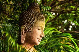 Boeddha in Cambodja van