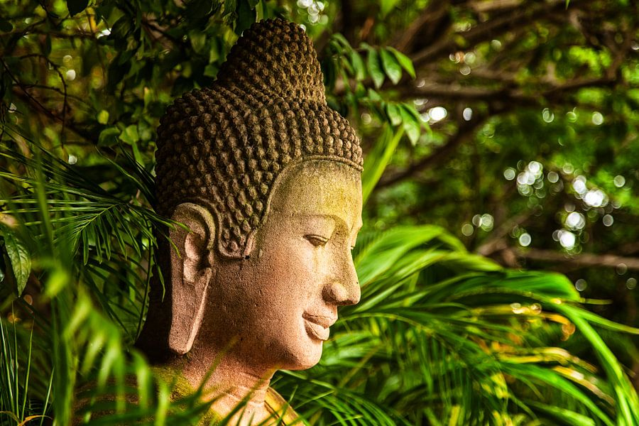 Boeddha in Cambodja van Jaap van Lenthe