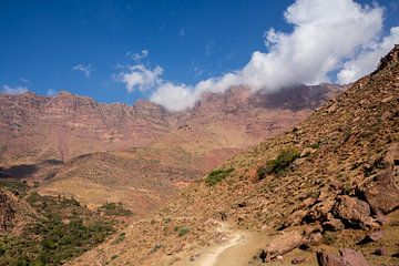 Pad in de Hoge Atlas in Marokko van Mickéle Godderis
