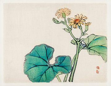 Leopard plant door Kōno Bairei (1844-1895). van Studio POPPY