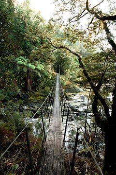 Wandern im Abenteuer, Hängebrücke von Niels Rurenga