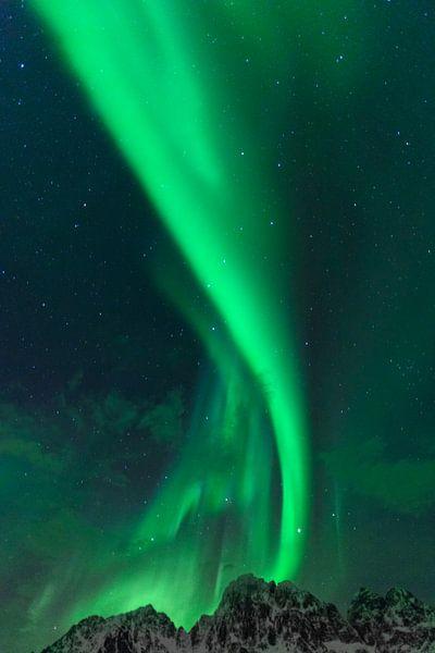 Noorderlicht of Aurora Borealis in de sterrennacht over de besneeuwde bergtoppen van de Lofoten van Sjoerd van der Wal