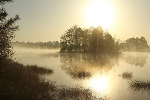 Zonsopkomst in het Leersumse Veld. Sunset over fen. von Jan Katsman