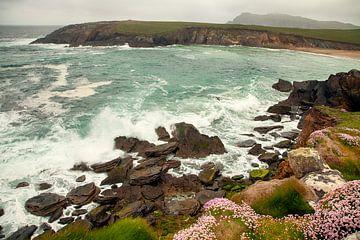 Irland von Astrid Volten