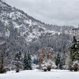 Landschapsfoto van het Slot Neuschwanstein van Bruno Baudry