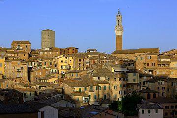 Siena Oude Stad van Patrick Lohmüller