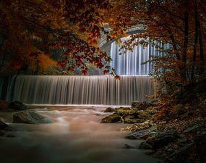 Herfst perfectie van