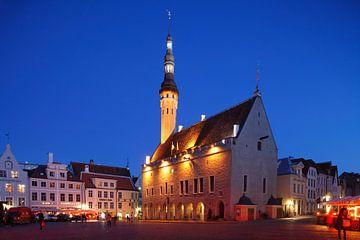 Rathaus ,  Altstadt, Tallinn, Estland von Torsten Krüger