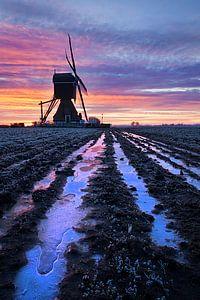 Fraaie zonsopkomst bij de molen