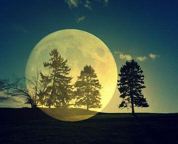 Moon spirit van Vera Laake