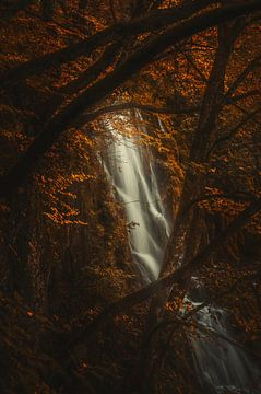 Opnieuw verliefd worden van Joris Pannemans - Loris Photography