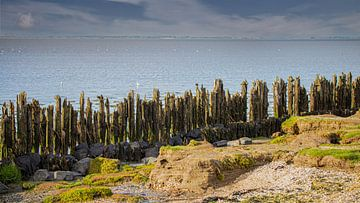 côte des Wadden sur By Foto Joukje