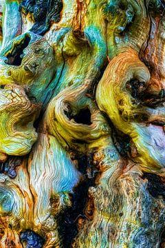 The Beast is Lonely van GOOR abstracten