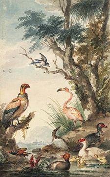 Landschap met exotische vogels Aert Schouman (1710-1792) 1765 van Teylers Museum