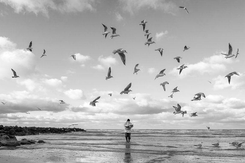 De garnaalvisser van Annick Cornu