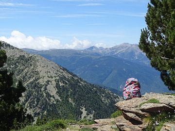 Rugzak in de stilte van de bergen van