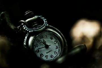Le temps est précieux 2 sur Kirsten Scholten