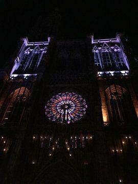 Cathédrale notre-dame at night van Jeus Akkerman