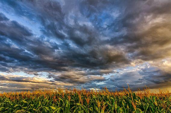 Corn And Clouds van Bram Visser