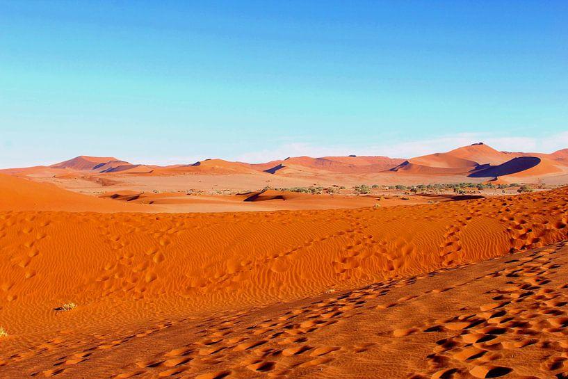 Voetsporen in Deadvlei, Namibië van Inge Hogenbijl