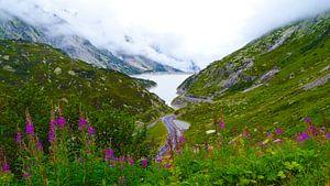 Zwitserland van