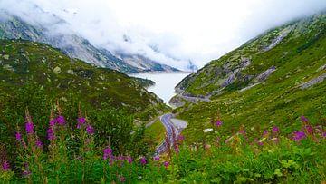 Zwitserland von Fayola Henderikse