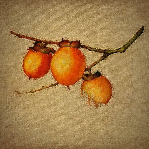 Oranje bessen van Jan Keteleer