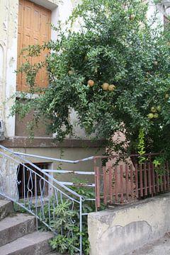 Grieks huis met appelboom