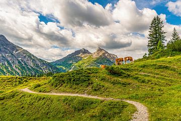 Wanderpfad im Lechquellengebirge von MindScape Photography