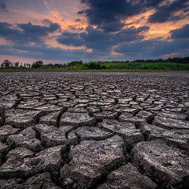 De uitgedroogde aarde van Peter Bijsterveld
